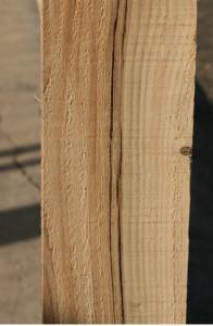 Pęknięcia nie są wielkim problemem w przypadku konstrukcji ale sprawiają, że nie wolno używać takiego drewna do produkcji mebli. Fot. Bartosz Nowacki