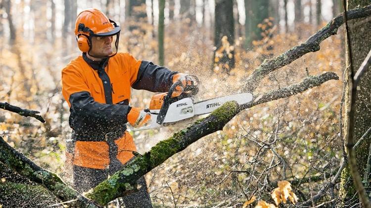 Samodzielne pozyskiwanie drewna STIHL