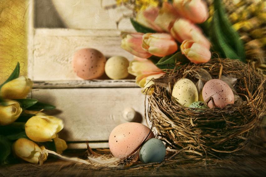 Wielkanocne dekoracje domu