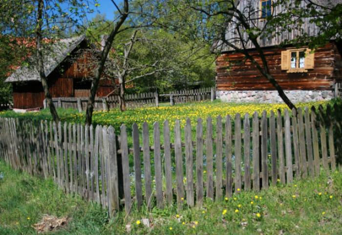 Tradycyjne ogrodzenie z drewnianych sztachet