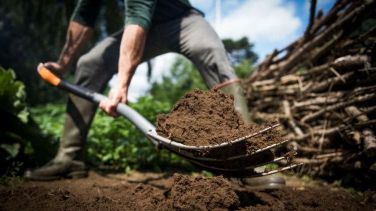 Rewolucja w pracach ogrodniczych