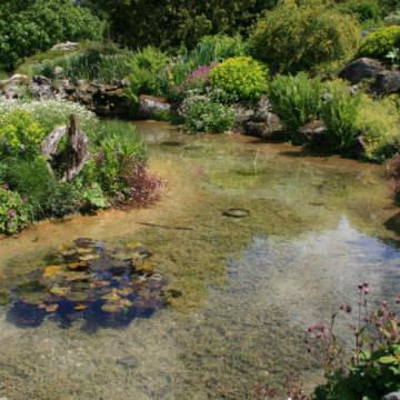 Zbiorniki i cieki wodne w ogrodzie