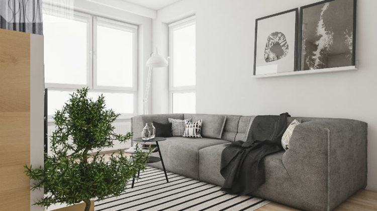 Mieszkanie z sofą w roli głównej