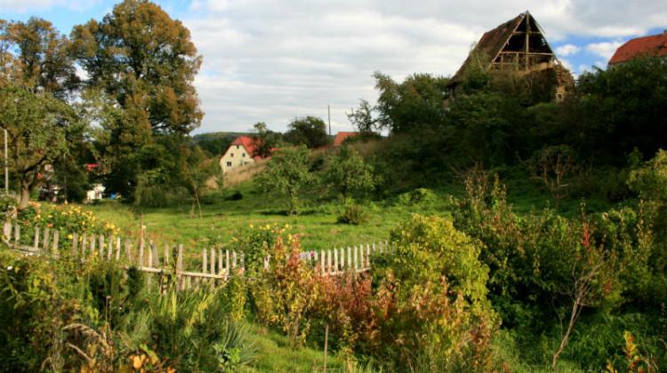 Rustykalny ogród