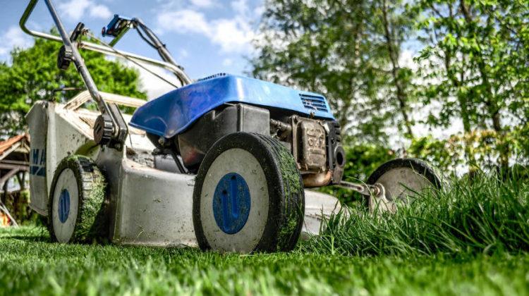Jakościowe narzędzia do ogrodu
